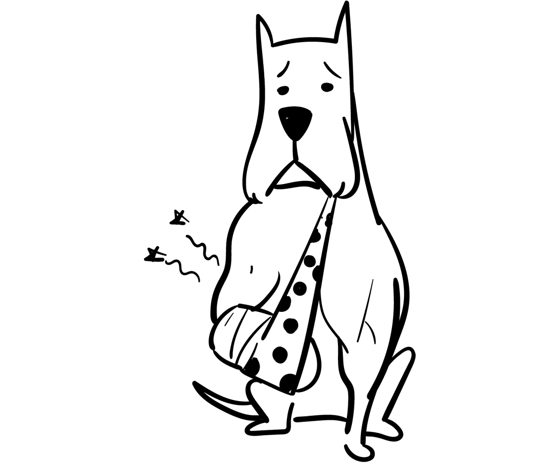 Spot Pet Insurance For When Your Dog Is Hospitalized.