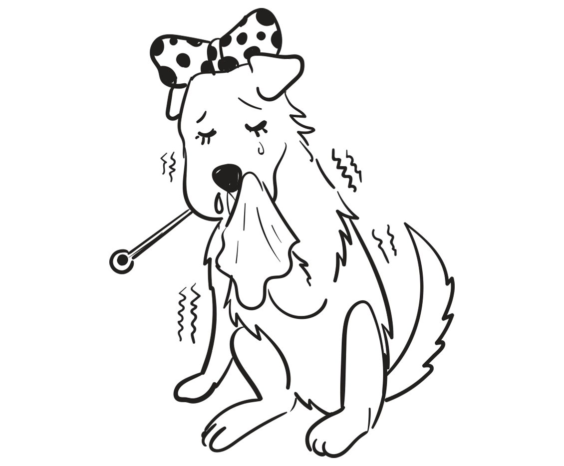 Spot Pet Insurance For When Your Dog Has The Flu