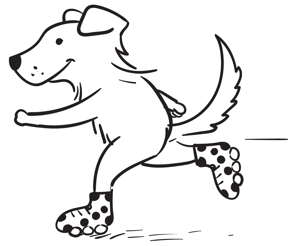 Spot Pet Insurance for Rescue Dogs