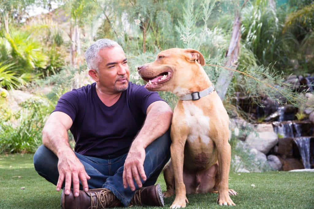 Cesar Millan sitting with his dog Daddy