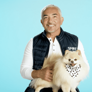 Cesar Millan and Pomeranian