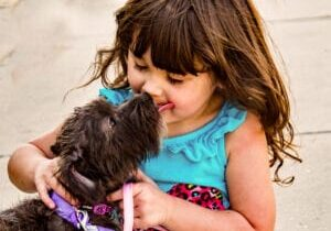 Spot-Pet-Insurance-Blogbowl-July-2020-do-your-kids-want-a-dog-best-dog-breeds-for-families-with-children-featured-image